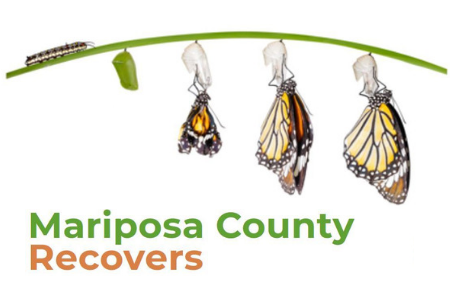 Image of a caterpillar changing into a butterfly with word that reads, Mariposa County Recovers